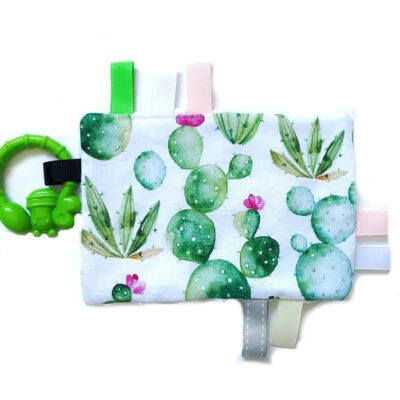 Metkowiec sensoryczny Kaktusy