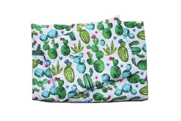 kaktusy_komplet