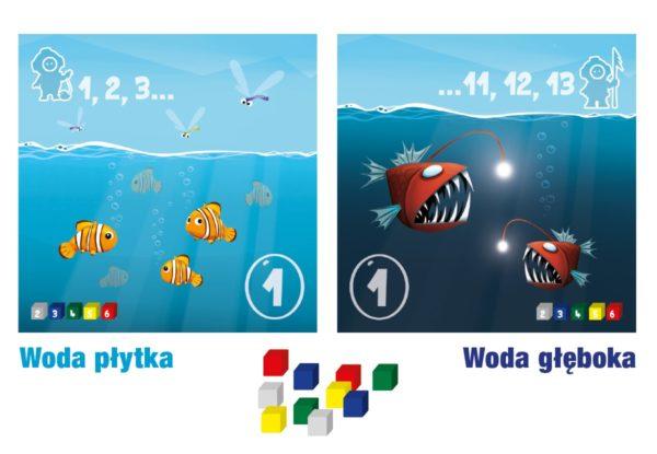 glebia4