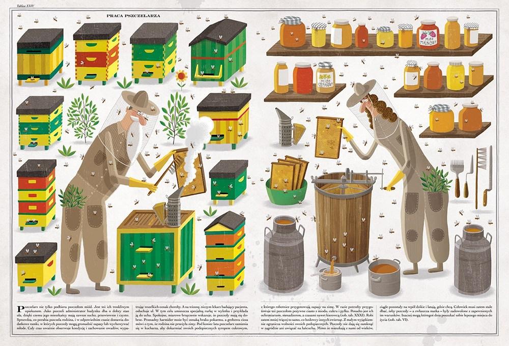 Pszczoły | Piotr Socha
