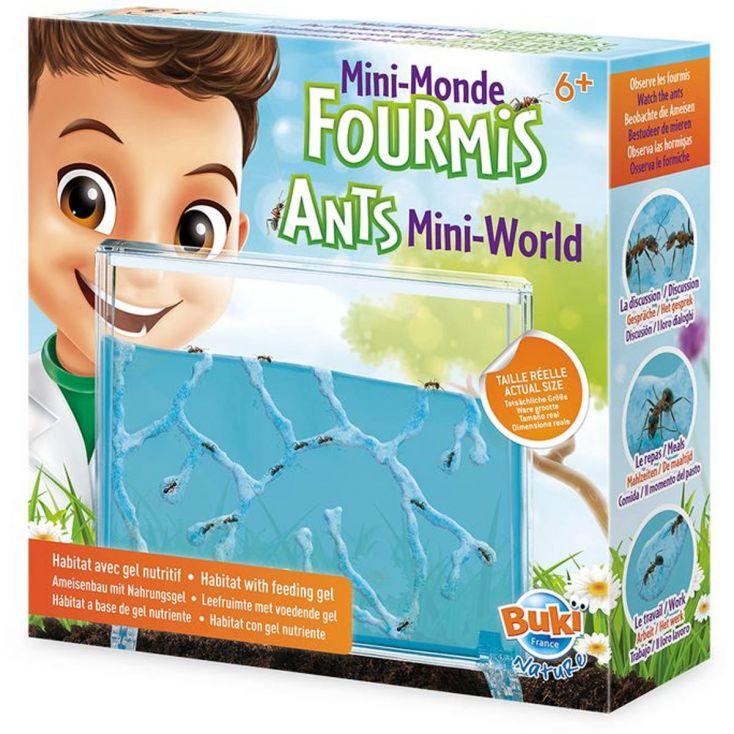 Mini Formikarium - akwarium dla mrówek | Buki