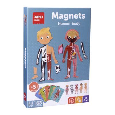 Magnetyczna układanka Ciało człowieka | Apli Kids