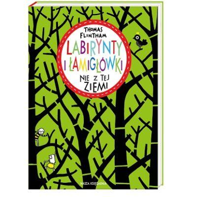 Labirynty i Łamigłówki - książka kreatywna